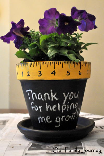 Teacher Thank You Potted Plant