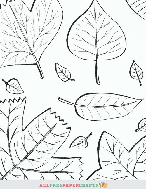 Cascading Fall Leaves Printable Coloring Pages ...