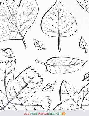 graphic about Leaves Printable identified as Cascading Slide Leaves Printable Coloring Internet pages