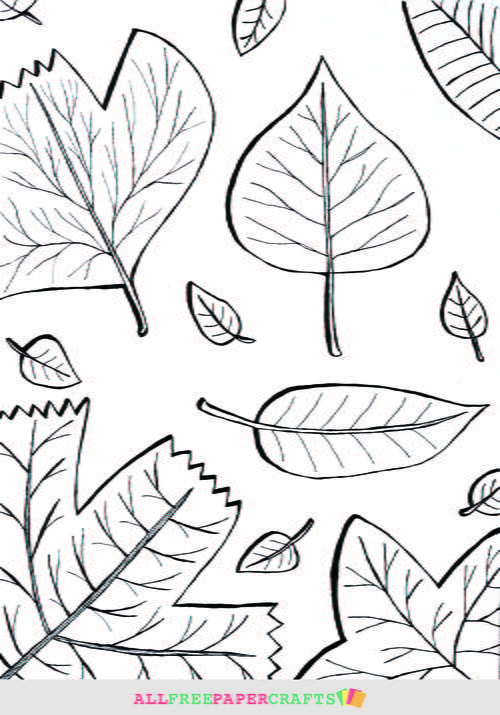 Cascading Fall Leaves Printable Coloring Pages highres 500 ID