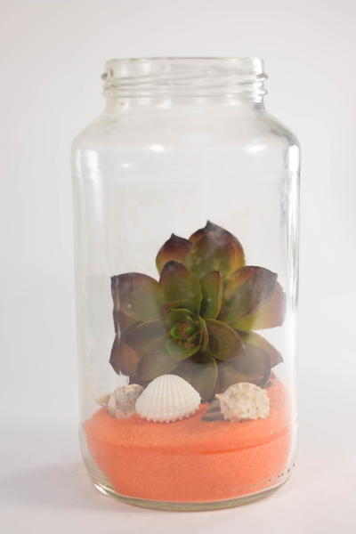 Colorful Recycled DIY Terrarium