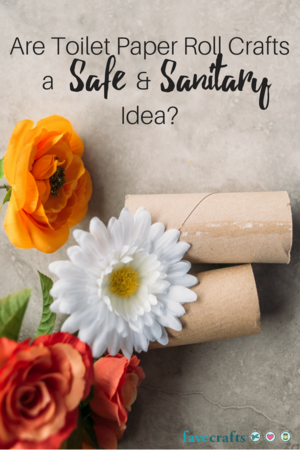 Are Toilet Paper Roll Crafts a Safe and Sanitary Idea?