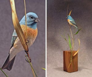 Western Brilliance: The Lazuli Bunting, Part One