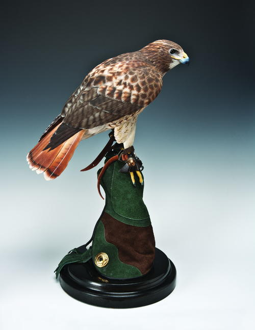 Red-Tailed Hawk Wood Carving Pattern