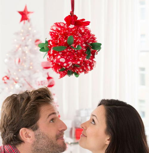 Make it Merry DIY Kissing Ball