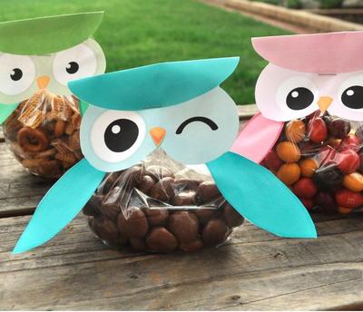 Paper Craft Animals 3d