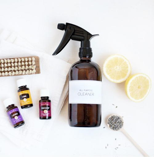 Homemade All Purpose Cleaner Spray