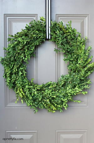 Breezy Boxwood DIY Wreath