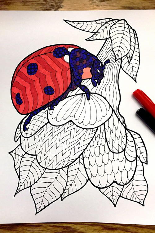 Ladybug Zentangle Coloring Page