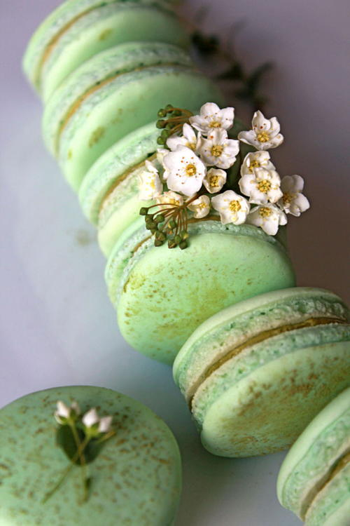 Matcha Green Tea Macarons