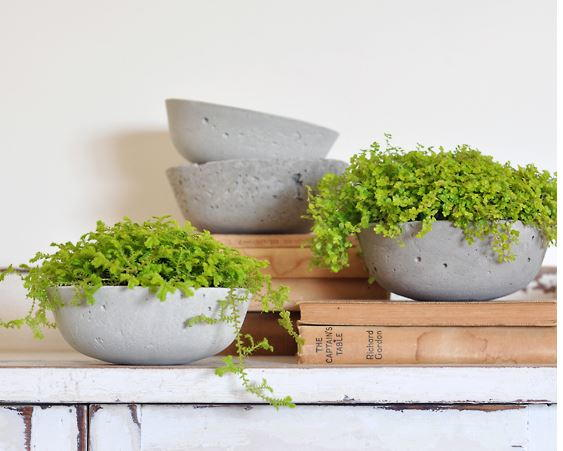 Simple DIY Concrete Planters Tutorial
