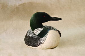 Back to the World, Part Two: Loon Texturing