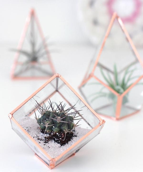 Gorgeous DIY Glass Terrarium