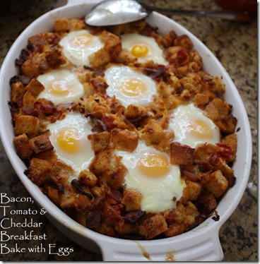 Fancy Bacon Tomato Egg Bake