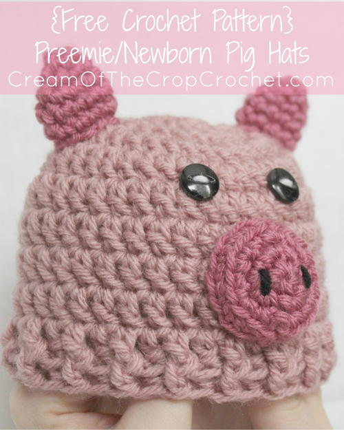 Preemienewborn Pig Hat Allfreecrochetcom