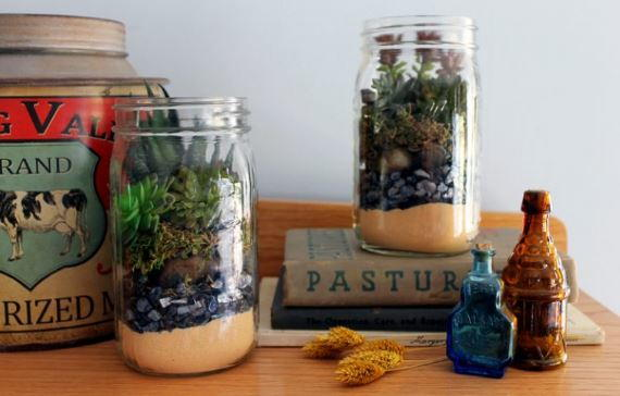 Terrarium in a Mason Jar Gift Idea