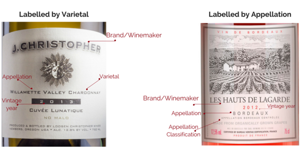 How to Read Wine Labels by Grape Name Infographic