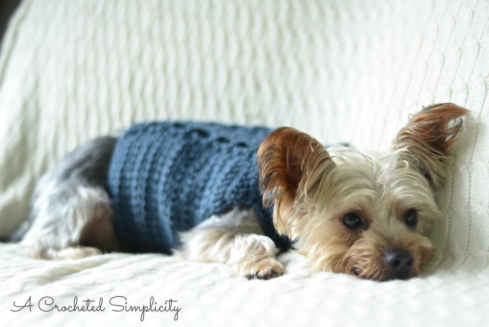 Cabled Dog Sweater Allfreecrochet Com