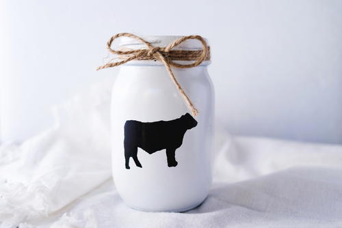 Adorable Farmhouse Mason Jar Craft