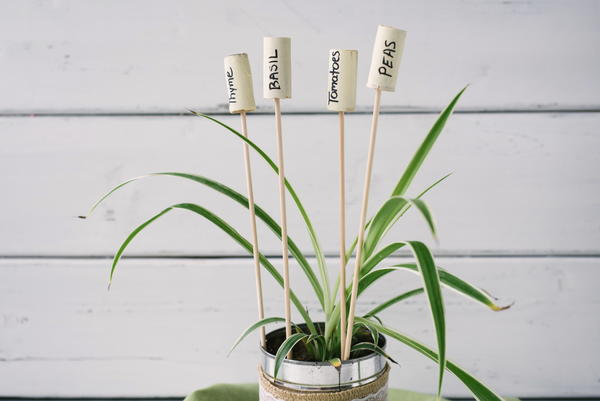 Quick and Easy DIY Garden Labels
