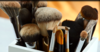 Makeup Brushes 101: Types of Brushes for Makeup