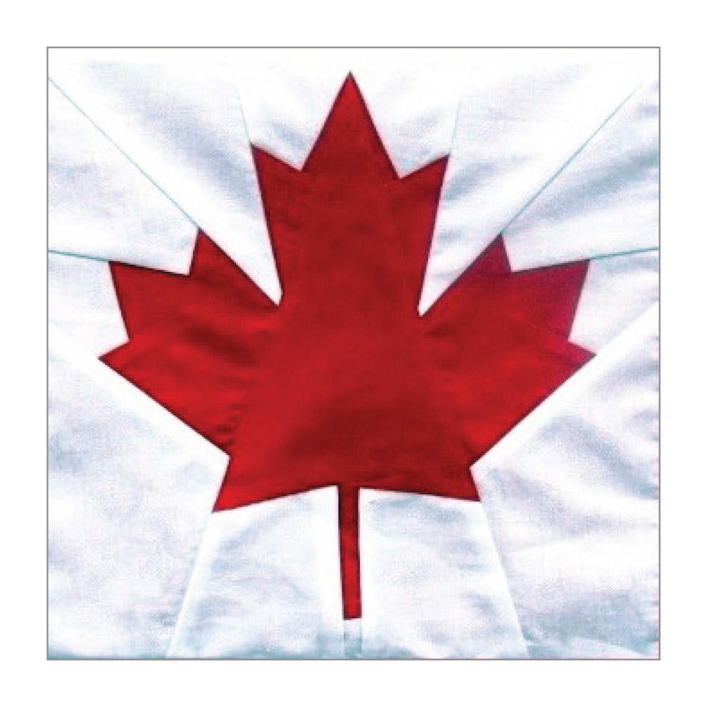 Canada Maple Leaf Block Pattern | FaveQuilts.com