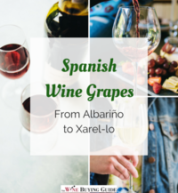 Spanish Wine Grapes: A List from Albariño to Xarel-lo