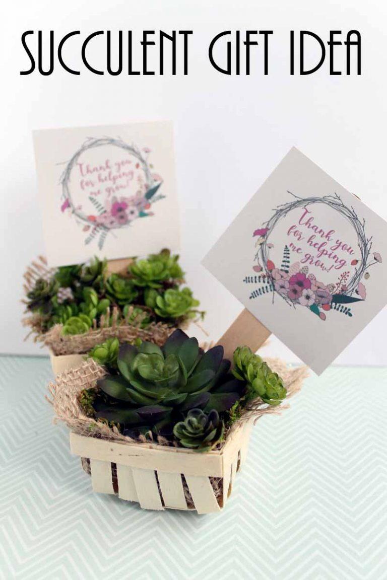 & Succulent Gift Idea   FaveCrafts.com
