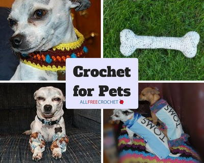17 Patterns Crochet for Pets