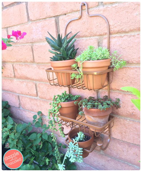 Shower Caddy as a Vertical Wall Planter