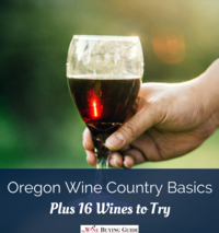 Oregon Wine Country Basics, Plus 16 Wines to Try