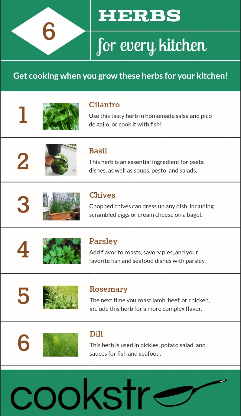 8 Herb Garden Tips for Cooks: What to Plant, When to Harvest, and ...