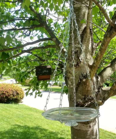 DIY Glass Lid Bird Bath