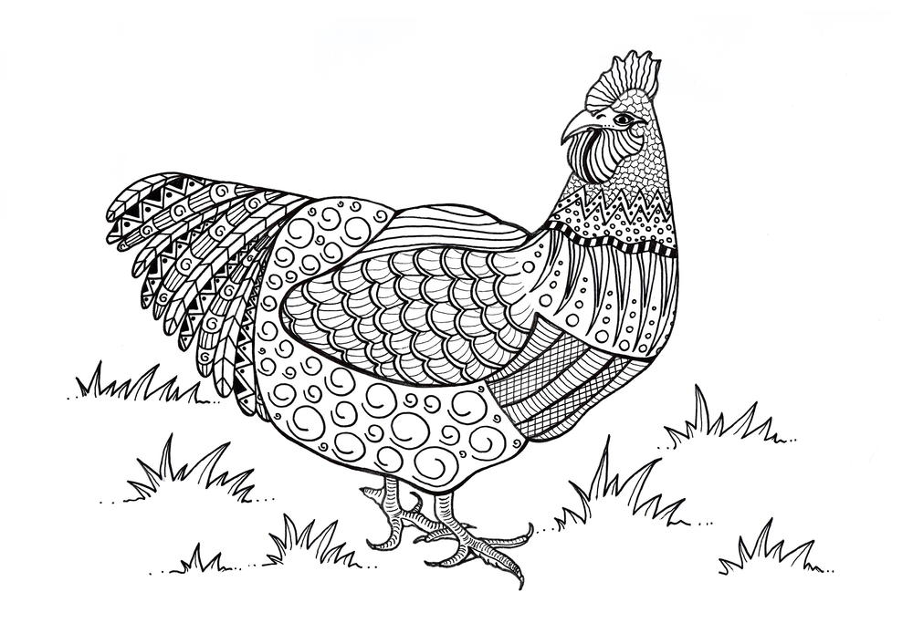 Colorful Chicken Adult Coloring Page | FaveCrafts.com