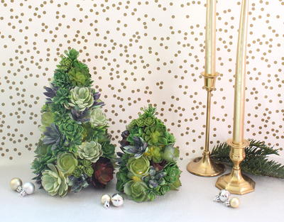 DIY Succulent Christmas Tree
