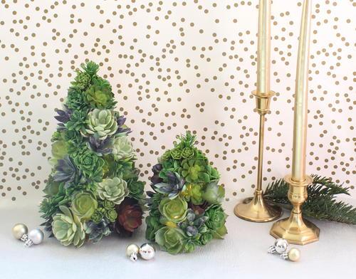 Christmas Succulent Decor.Diy Succulent Christmas Tree Allfreechristmascrafts Com