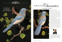 Carving the Scrub Jay: A Bird with Character