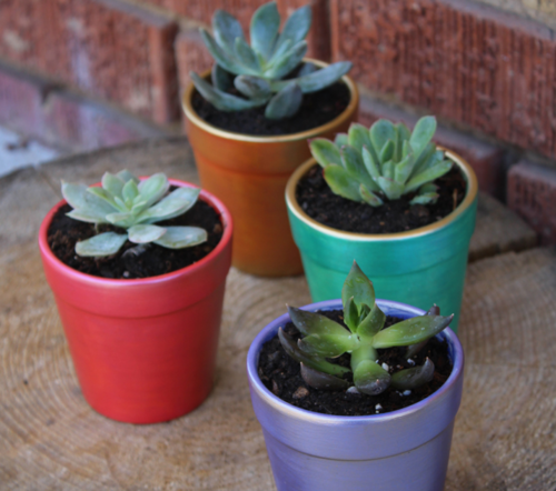 Painted DIY Colorful Flower Pots