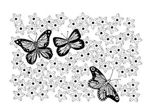 Butterfly Garden Adult Coloring Page