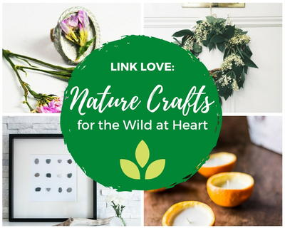 Link Love 15 Nature Crafts For The Wild At Heart