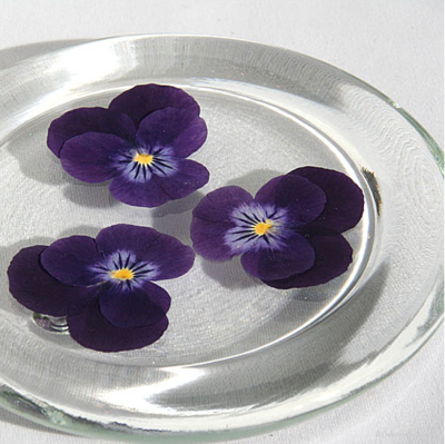 Pressed Pansies Glass Coasters