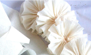 Simple Crepe Paper Flowers