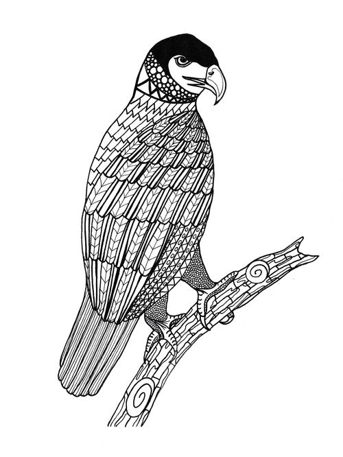 King of the Sky Adult Coloring Page