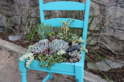 Succulent DIY Planter Chair