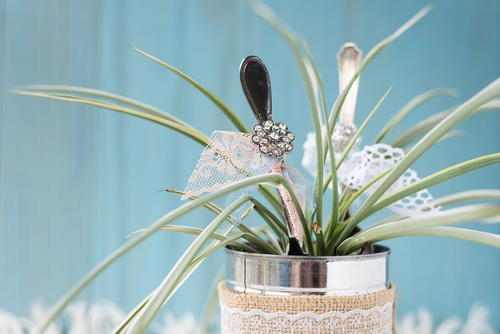 Vintage Recycled Spoon DIY Planter