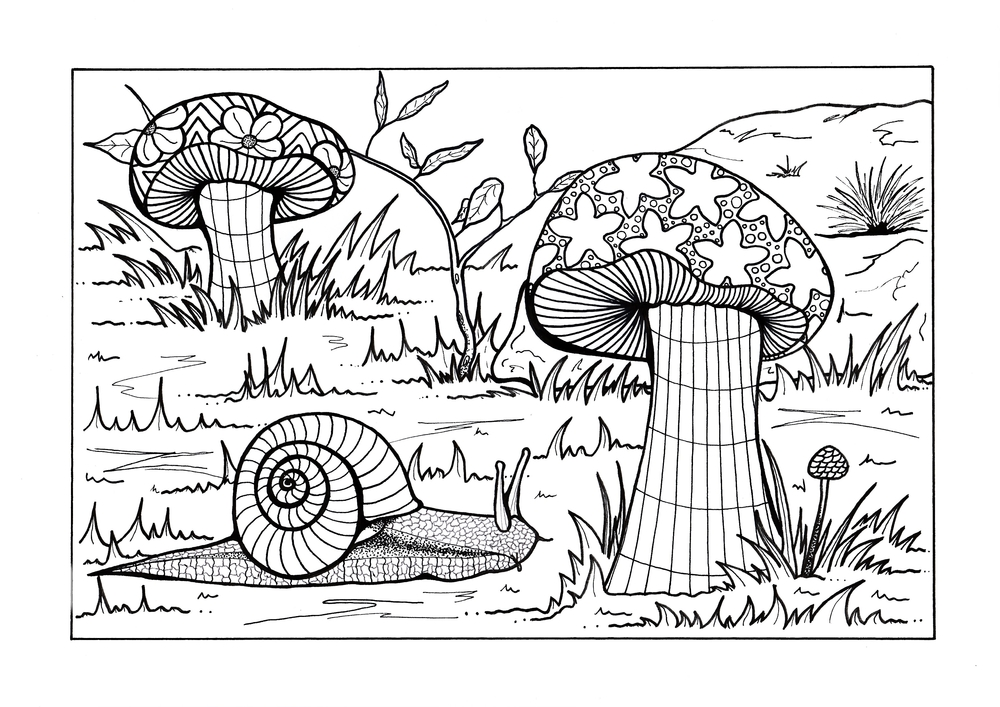 Forest Floor Adult Coloring Page