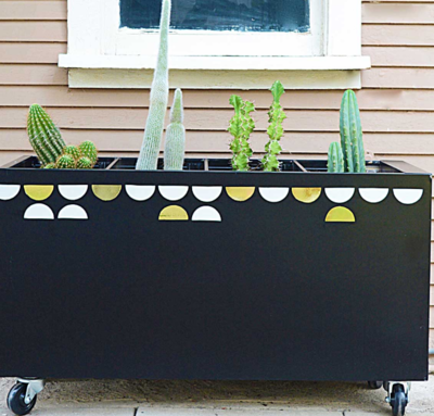 DIY Garden in a File Cabinet