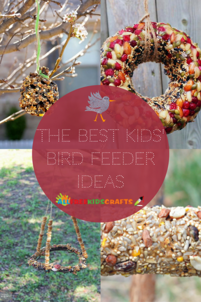 The Best Kids Bird Feeder Ideas