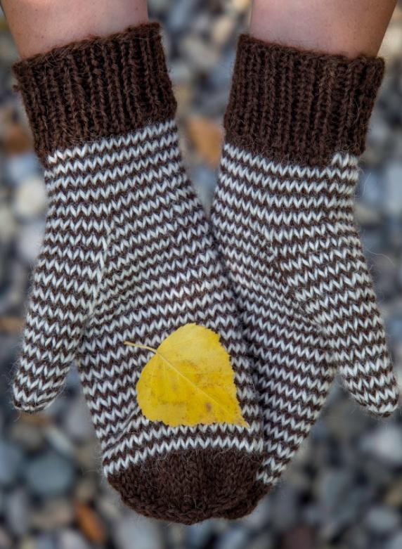 Mini Chevron Knit Mitten Pattern   AllFreeKnitting.com
