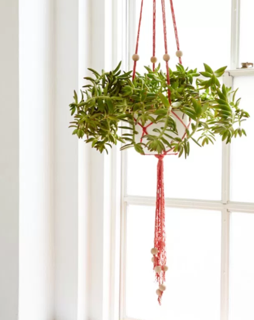 DIY Plant Hanger Finger Knitting Project